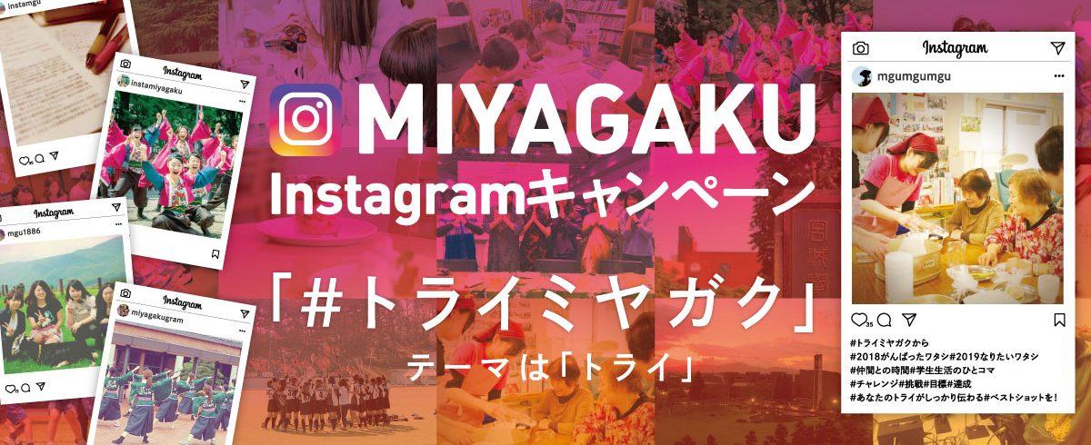 MIYAGAKU Instagram キャンペーン
